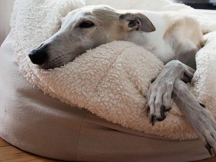 DIY-Anleitung: Hundekuschelsack nähen via DaWanda.com                                                                                                                                                                                 Mehr