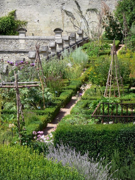 Kitchen garden   jardin potager   Domaine de Villarceaux: Medieval terrace, herb garden includes medicinal plants