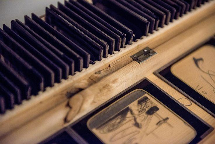 Le Musée du Vivant a inauguré lundi 23 janvier 2017 à France Écologie Énergie (ministère de l'Environnement, de l'Énergie et de la Mer), en présence de Ségolène Royal, son cabinet des merveilles et curiosités.   Le Musée du Vivant a prêté 637 pièces pour la composition de cette exposition, essentiellement des collections scientifiques liées à l'histoire d'AgroParisTech et des œuvres d'art réalisées par : F. Guerrier, J. Vantal, K. White, L. Rollinde et R. Cans.   ©Damien VALENTE - DICOM…
