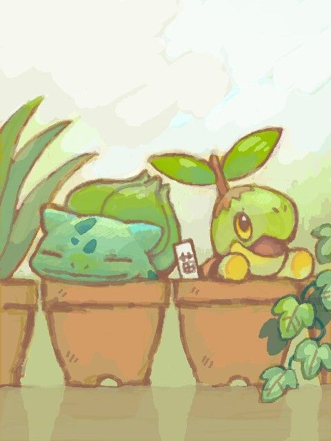 Turtwig, I want one :3 Actually, I want a Bulbasaur too :3 :3 And a Mudkip, a Goomy, a Deino, a Solosis... :3 :3 :3