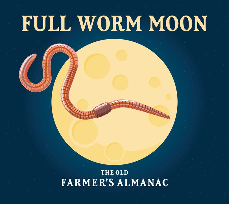 Full Moons for March 2018 ~ The Full Worm Moon & Blue Moon. When is the next Full Moon? Moon phases, best days, and more from The Old Farmer's Almanac.