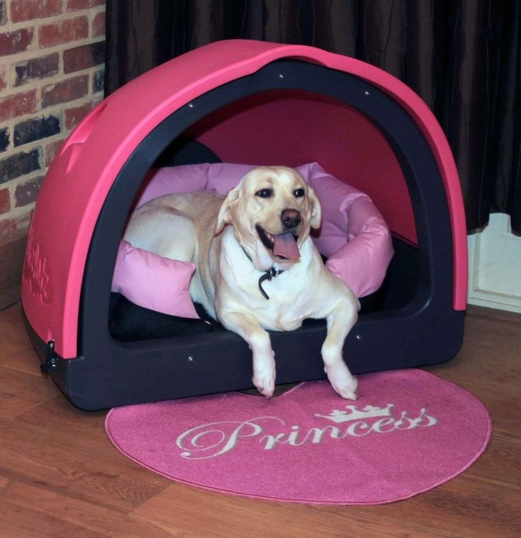 'Goldie' the lab takes a rest in her own special den  -  her large pink PetzPodz and matching Petzbedz - the ideal retreat . . . .