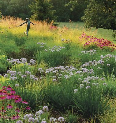 Dividing perennials improves the health of mature plants, and also allows you to…