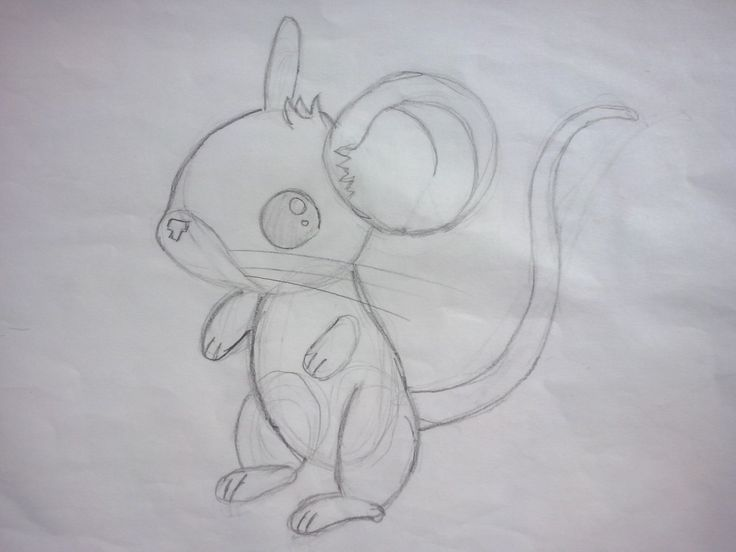 Line Drawing Mouse : 42 best #mice & rat drawings images on pinterest rats pet