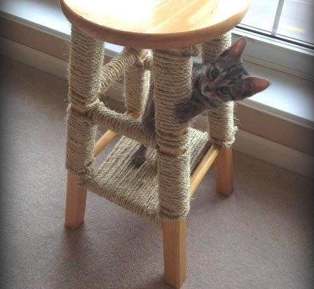 Bar Stool Scratching Post - PetDIYs.com