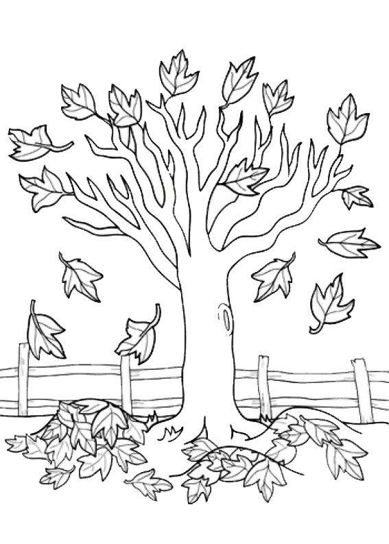 12 Disegni Di Alberi Autunnali Da Colorare ősz Pinterest Tree