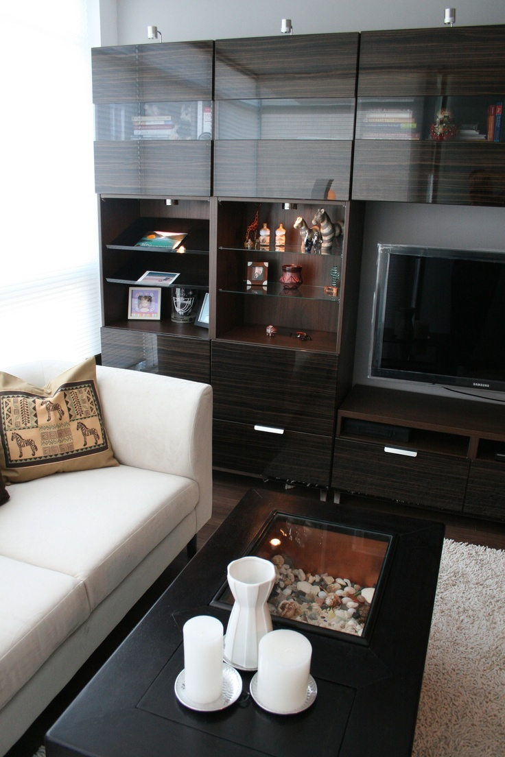 Condo - Living Room with plenty of storage makes this small condo comfy and stylish.  A place for everything...super elements & design.    Interior Design ~ Lissee Interiors