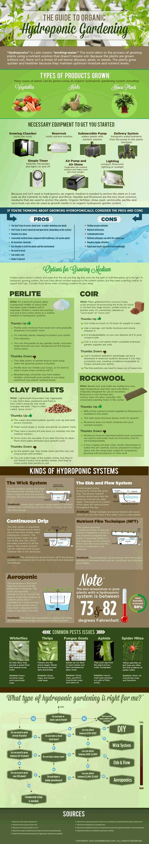 Guide To Hydroponic Gardening   #infographic #Hydroponic #Gardening #Farming