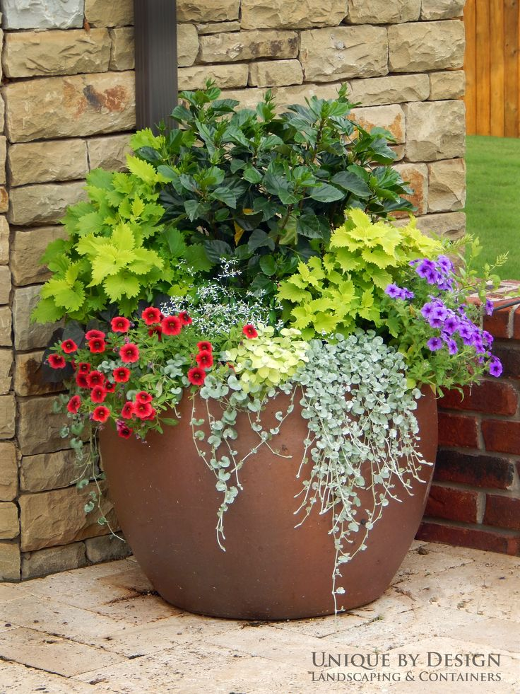 1725 best container gardens images on pinterest garden for Container garden ideas