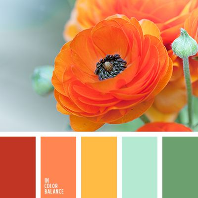 Coral tones are not always my favorite, but look at how well they coordinate with the blue, green, and yellow. Pretty!