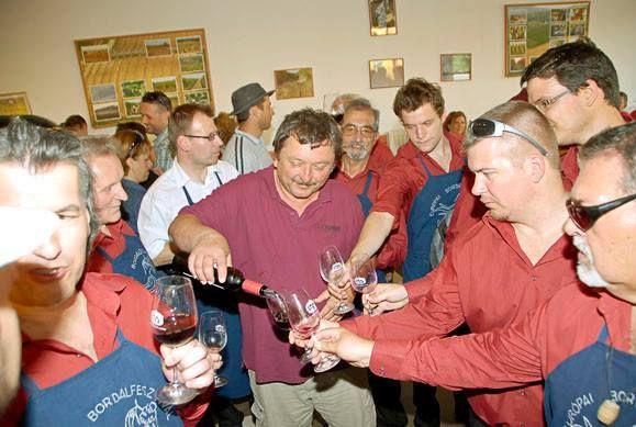 Taste our wines at our Winery! - Kóstold meg a borainkat a Pincészetünkben!