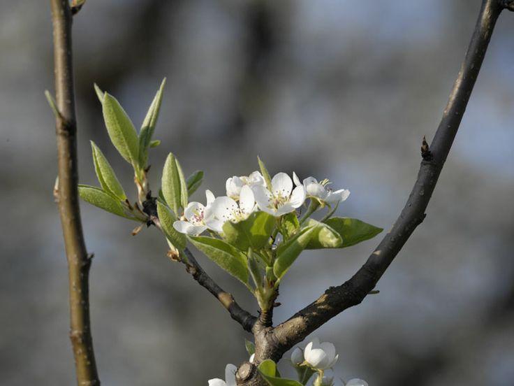 10 powodów, dla których wkurza mnie ta wiosna | Mamolka