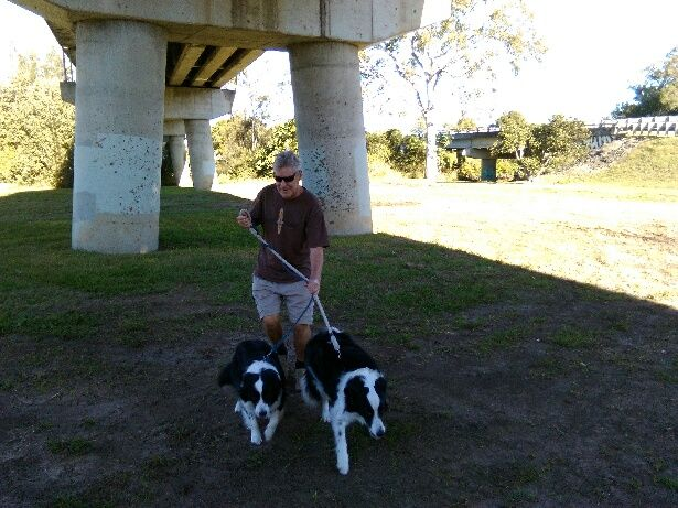 PAMMY/PADDY.......LOOKS LIKE THEY'RE WALKING ME! THEY ARE SO STRONG! dogsbigdayout.com.au