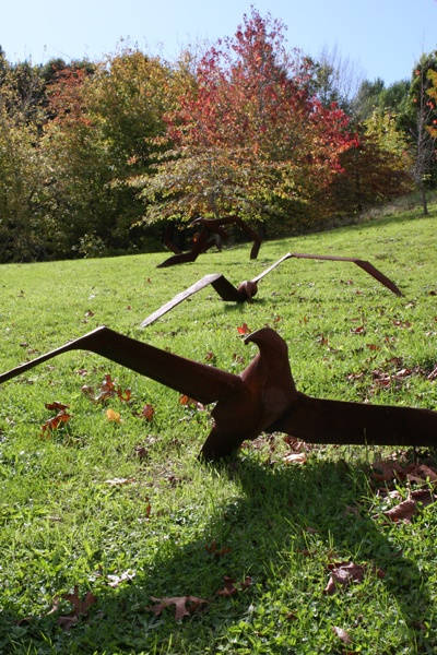 Greer Twiss. Tumbling Albatross. Brick Bay Wines - Sculpture Trail