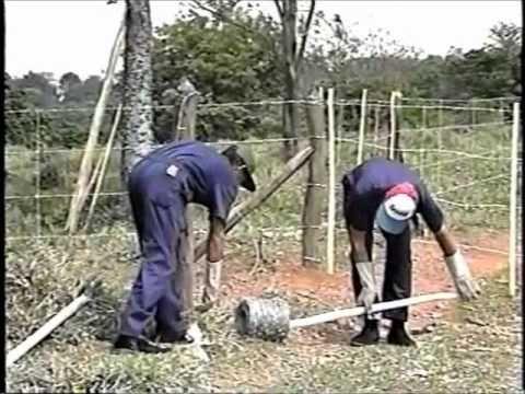 Como construir uma cerca de arame farpado