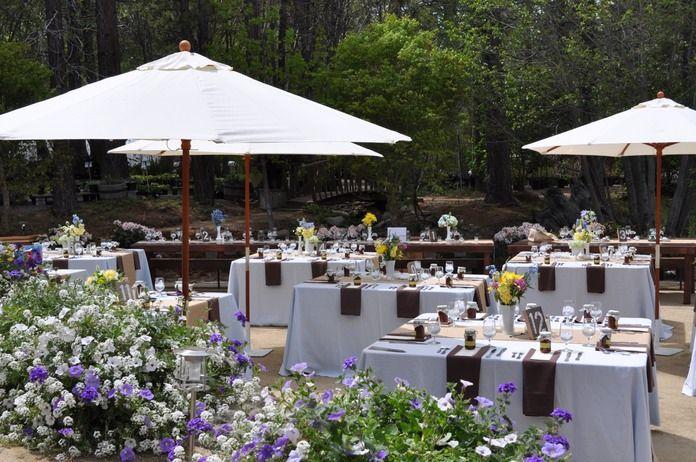 Tahoe Tree Company | reception venues | Pinterest | Photos ...