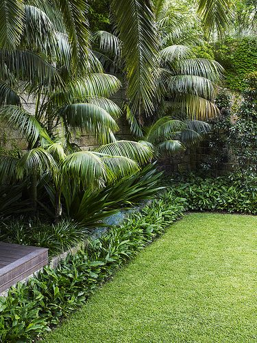 Front Garden Ideas Queensland simple tropical garden ideas queensland design and decorating