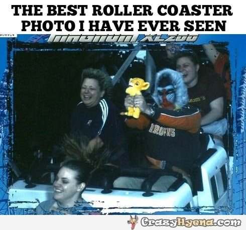 Best roller coaster photo ever. Monkey holding Simba from Lion King.