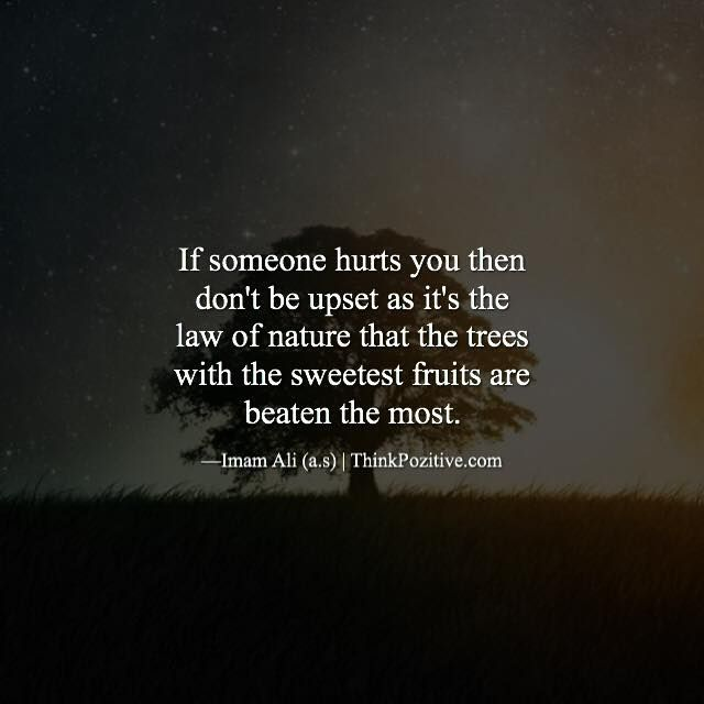 If someone hurts you then don't be upset as it's the law of nature that the trees with the sweetest fruits are beaten the most. ―Imam Ali (a.s) | ThinkPozitive.com