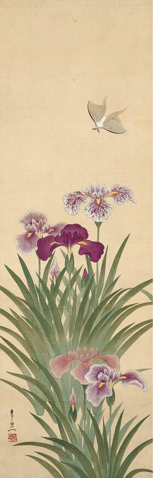 """Irises and Moth"" silk painting by Suzuki Kittsu c. 1805."