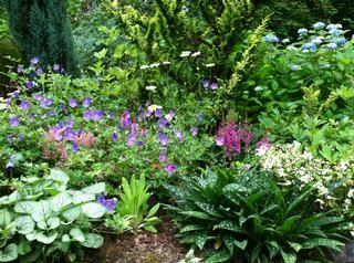 1000 Images About Gardens Gardening On Pinterest