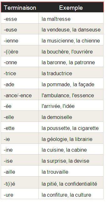 Féminin et masculin – le genre des mots français