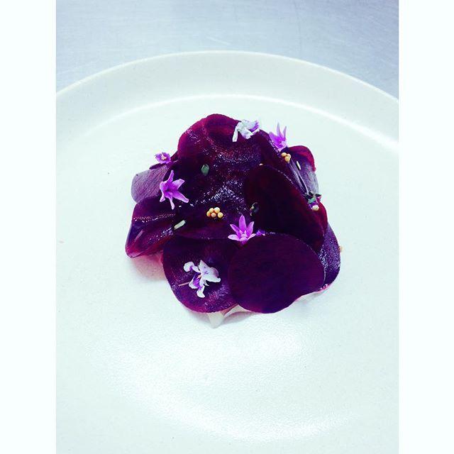 Petit aperçu de l'une des entrées de @theheritage_perth pour qui nous travaillons désormais  . . Salade de betterave, yaourt caramélisé, crumble de pain de seigle, jambon ibérique, pickles de quandong (une baie japonaise) et de graines de moutarde, copeaux de betterave, fleurs d'ail et jeunes pousses  . . Qu'en pensez-vous ? . #perth #australia #australie #westernaustralia #food #eat #restaurant #theheritage #lovefood #blog #blogger #bloggerstyle #chef #chefslife #beetroot #purple #pink #...