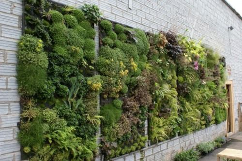 Wall of plants. helps the environment to produce cleaner air. NEW URBAN ENVIRONMENTALISM