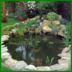 Folienteich mit Teichfolie, nach Ihren Vorstellungen im Garten anlegen