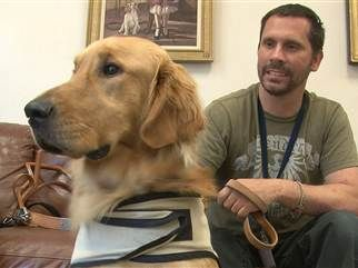 'Our heroes': Companion dogs help veterans heal