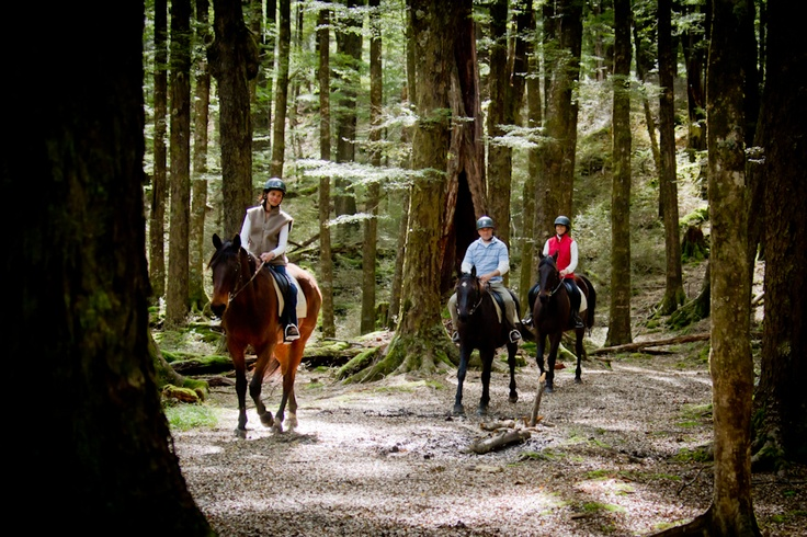 Go horseback riding through The Lord of the Rings filming locations of Glenorchy and Paradise outside of Queenstown, #NewZealand.