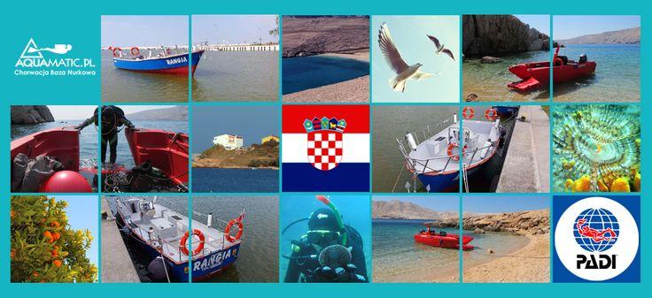 http://www.divingpag.com/pl/ nurkowanie w Chorwacji ... !