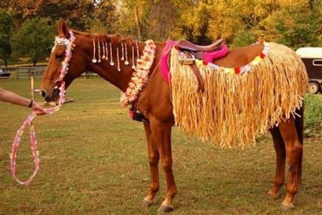 Horse costume idea
