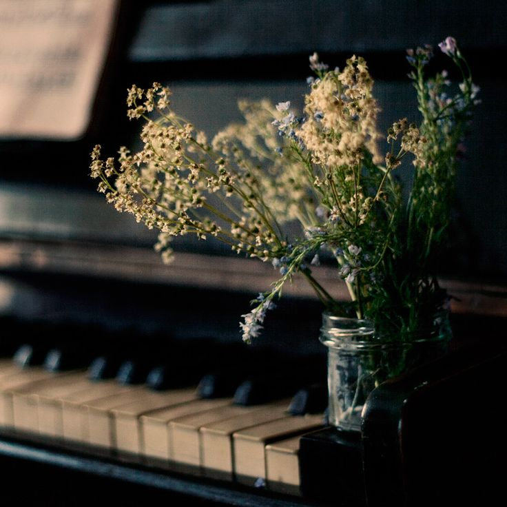 25+ Best Ideas About Piano Photography On Pinterest