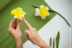 Нарцисс крупнокорончатый из гофрированной бумаги. Мастер-класс :: Втворчестве.ru