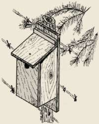 Missouri bluebird house plans