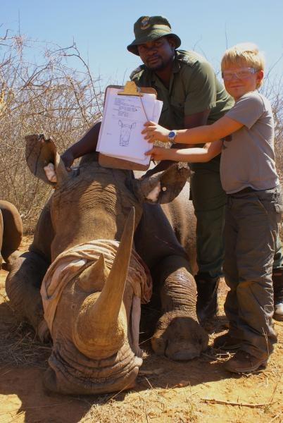 "Newly ""notched"" ears - Conservation Safaris - Jaci's Lodges, Madikwe"