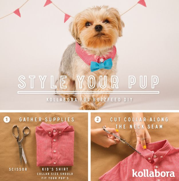 <b>Keep your furry friend rested, well-fed, and properly attired with these easy DIYs.</b>