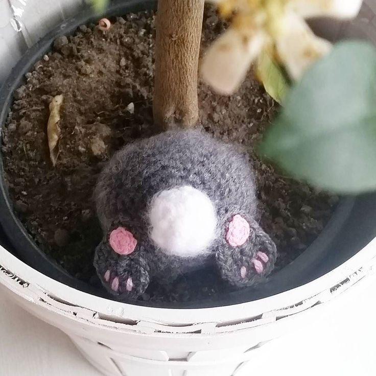 Easterbunny but in my lemon tree!  #crochet #crochetaddict #crochetdesign #design #crocheting #virkning #virkat #virka #påsk #bunny #kanin #easter #påskpynt #påskpyssel #amigurumi #diy #yarn #instacrochet #lemontree by northenloops