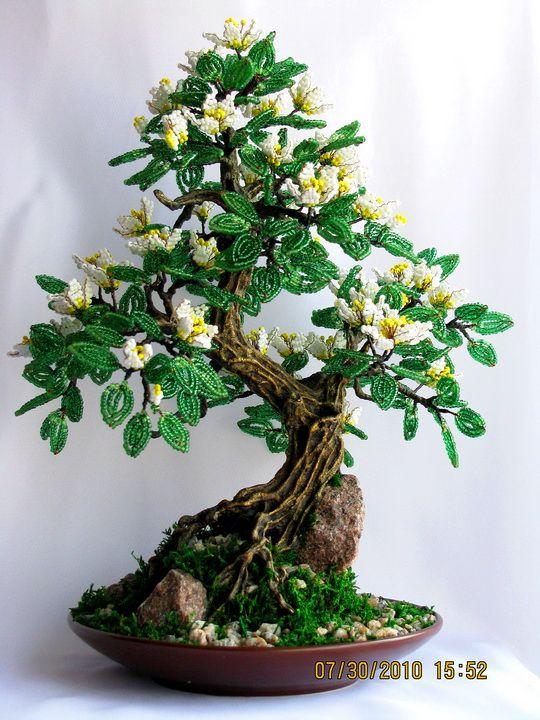 how to grow a bonsai wire mat