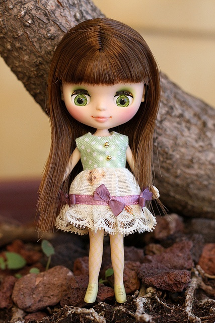 419 best images about DOLLS: Petite Blythe! on Pinterest ...