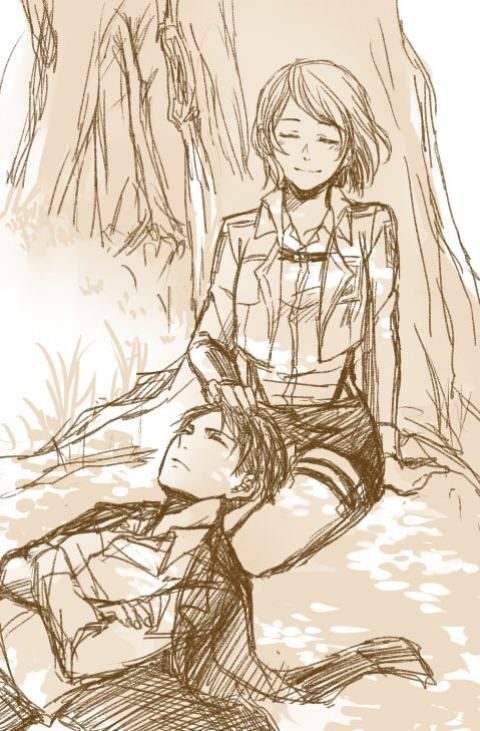 Levi x Petra - Attack on titan