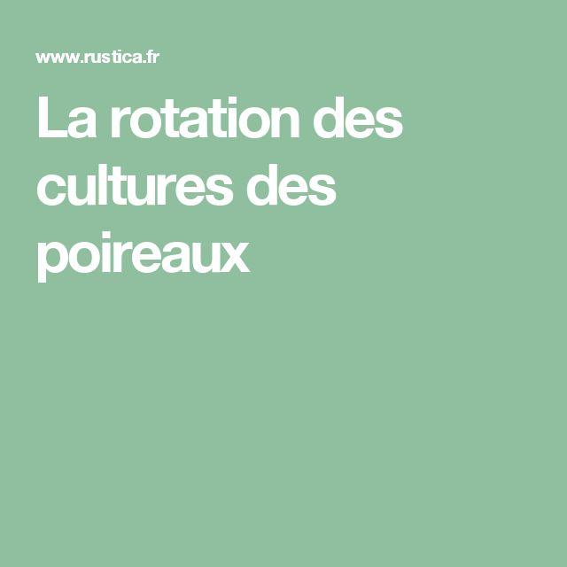 La rotation des cultures des poireaux
