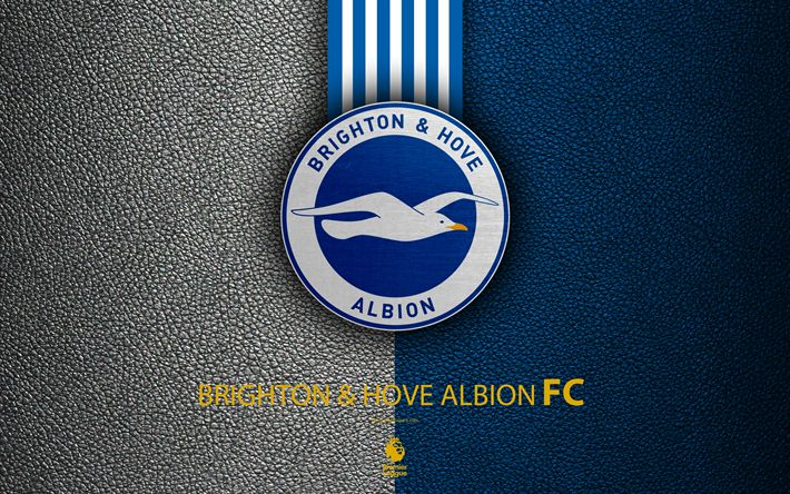 Download wallpapers Brighton and Hove Albion FC, 4k, English football club, leather texture, Premier League, logo, emblem, Brighton and Hove, England, United Kingdom, football