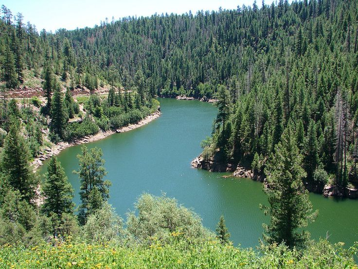 Blue Ridge Reservoir camping in AZ.  We have been here several times and it is peaceful as well as beautiful,