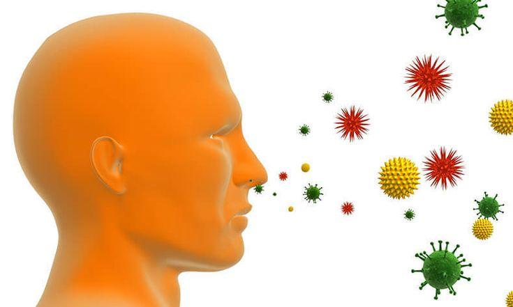 Что такое аллергия, болезнь или программный сбой