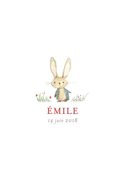 Faire-part de naissance Petit lapin champêtre