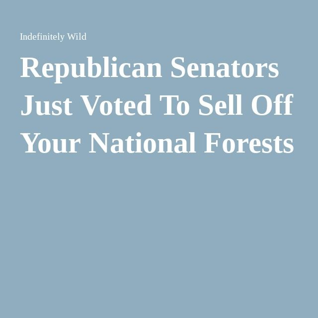 Republican Senators Just Voted To Sell Off Your National Forests