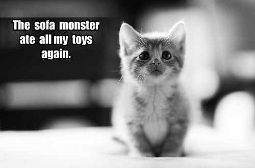 The sofa monster ate all my toys again.: Cats, Kitty Cat, Animals, Pet, Adorable, Kittens, Kitties