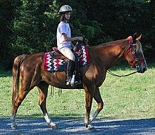 Horseback riding at Gettysburg